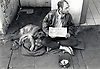 Homeless man begging, Nottingham UK 1990s