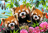 Howard, REALISTIC ANIMALS, REALISTISCHE TIERE, ANIMALES REALISTICOS, paintings+++++,GBHR963,#a#, EVERYDAY ,Selfie,Selfies