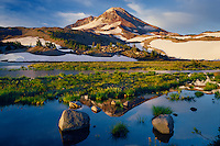 South Sister from Chambers Lakes<br />