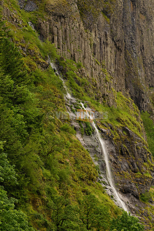 Waterfall in the Columbia River Gorge, Oregon