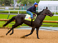 LOUISVILLE,KNY - MAY 04:  Sonneteer, Morning works  at Churchill Downs, Louisville, Kentucky. (Photo by Sue Kawczynski/Eclipse Sportswire/Getty Images)