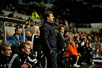 Thursday 28 November  2013  Pictured:Michael Laudrup, Manager of Swansea City <br /> Re:UEFA Europa League, Swansea City FC vs Valencia CF  at the Liberty Staduim Swansea