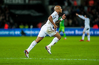 Andre Ayew of Swansea celebrates his goal during the Barclays Premier League match between Swansea City and Sunderland played at the Liberty Stadium, Swansea  on  January the 13th 2016