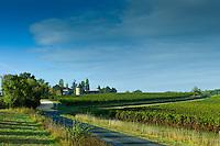 Chateau de Trois Tours and Bordelais vineyards in the Bordeaux wine region of France