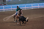 WY: Wyoming, Cody..Cody Night Rodeo..Photo #: yellow889..Photo copyright Lee Foster, 510/549-2202, lee@fostertravel.com, www.fostertravel.com..