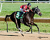 Donita's Ruler winning at Delaware Park on 9/19/13