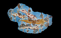 Mycenaean Fresco wall painting of a Wild Boar Hunt from the Tiryns, Greece. 14th - 13th Century BC. Athens Archaeological Museum. Black Background