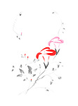 Two beautiful red and pink Morning Glory flowers artistic oriental Zen style design illustration based on an original artwork, isolated on white background