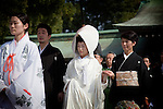 Tokyo - 31st of October 2009 - A young couple getting married in a traditional ceremony at Meiji-jingu shinto temple.