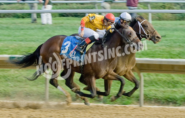 Donoharm winning at Delaware Park on 10/1/12
