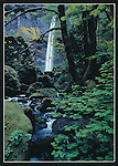Oregon.  5x7 Postcards. Frank Balthis