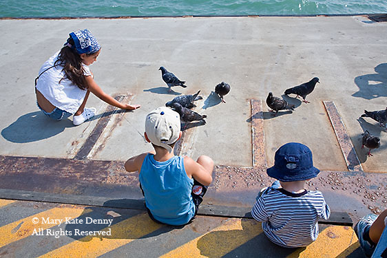 Three young children wearing hats sit on dock in Venice, Italy feeding pidgeons in summer by water