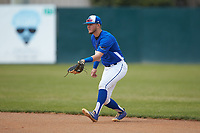 Mars Hill Lions second baseman Paul Martin (14) on defense against the Queens Royals at Intimidators Stadium on March 30, 2019 in Kannapolis, North Carolina. The Royals defeated the Bulldogs 11-6 in game one of a double-header. (Brian Westerholt/Four Seam Images)