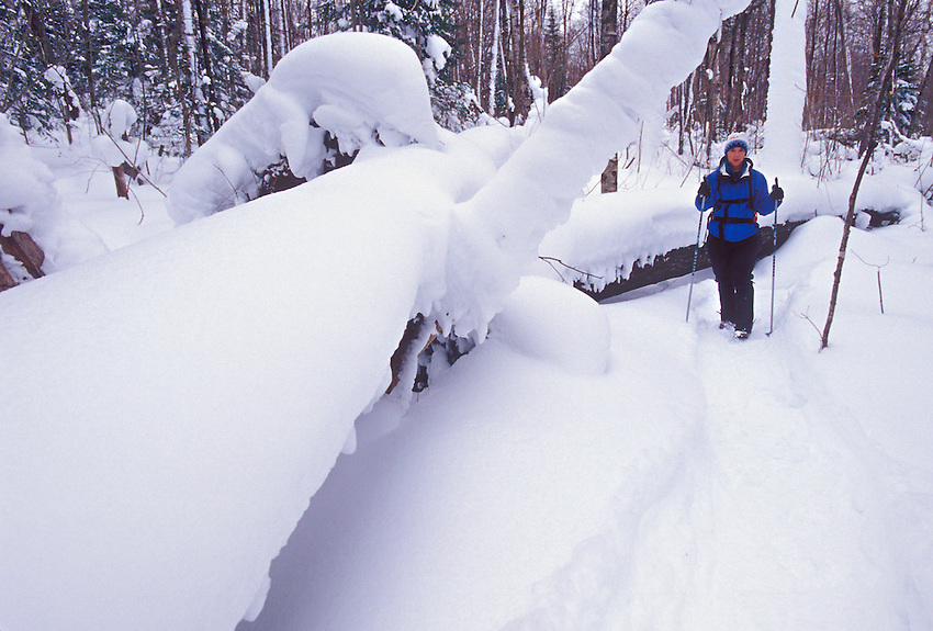 A snowshoer hikes through fresh snowfall on a winter trail in Pictured Rocks National Lakeshore near Munising, Mich.