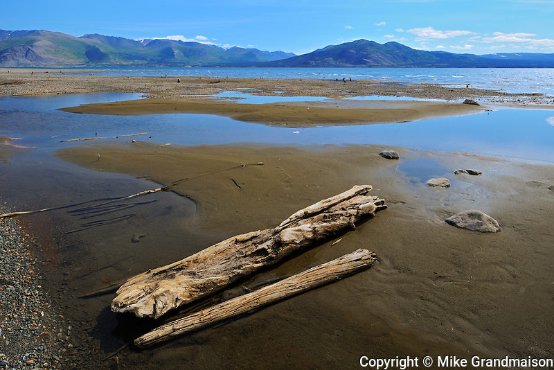 Kluane Lake and driftwood<br /> Kluane National Park<br /> Yukon<br /> Canada