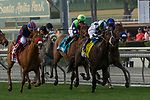ARCADIA, CA  DECEMBER  30: #4 Daddys Lil Darling, ridden by Mike Smith,takes the lead in the stretch of the American Oaks (Grade l), on December 30, 2017, at Santa Anita Park in Arcadia, CA.(Photo by Casey Phillips/ Eclipse Sportswire/ Getty Images)