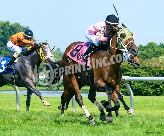 Take Warning winning at Delaware Park on 7/19/17