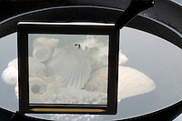 EFFECT OF POLARIZING FILTER ON GLARE<br /> 1 of 2<br /> Light Glare Aligns Parallel To Water Surface<br /> Glare is polarized in the same plane as the surface of the water. The filter is here  horizontally aligned and does not block the glare. To block such plane-polarized light, a filter with a vertically aligned polarization axis must be used.