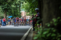 Peloton up the Tiegemberg. <br /> <br /> 71th Halle Ingooigem 2018 (1.1)<br /> 1 Day Race: Halle > Ingooigem (197.7km)
