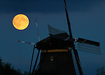 Nederland, Kinderdijk 27-09-2015, Full Moon rises over Unesco World Heritage site the Kinderdijk windmills. <br /> &copy; foto Michael Kooren 2015.