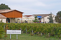 Vineyard. Winery building. Chateau Grand Corbin Despagne, Saint Emilion Bordeaux France