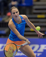 Rotterdam, Netherlands, December 18, 2016, Topsportcentrum, Lotto NK Tennis, Final,  Bibiane Schoofs (NED) <br /> Photo: Tennisimages/Henk Koster