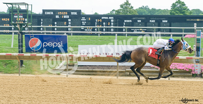 Rum Therapy winning at Delaware Park on 8/6/16