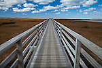 The Bass Hole boardwalk in Yarmouth, Cape Cod, MA, USA