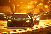 2017 IMSA WeatherTech SportsCar Championship<br /> Mobil 1 Twelve Hours of Sebring<br /> Sebring International Raceway, Sebring, FL USA<br /> Saturday 18 March 2017<br /> 86, Acura, Acura NSX, GTD, Oswaldo Negri Jr., Tom Dyer, Jeff Segal<br /> World Copyright: Michael L. Levitt/LAT Images<br /> ref: Digital Image levitt_seb_0317-29330