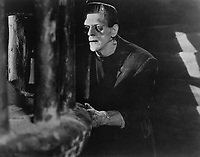 Frankenstein (1931) <br /> Boris Karloff<br /> *Filmstill - Editorial Use Only*<br /> CAP/KFS<br /> Image supplied by Capital Pictures