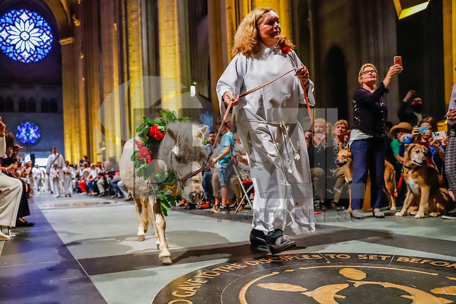 NOVA YORK, EUA, 07.10.2018 - SAO-FRANCISCO - 34ª celebração anual da Festa de São Francisco com benção e procissão de animais na Catedral de São João, o Divino na Ilha de Manhattan em Nova York nos Estados Unidos neste domingo, 07. (Foto: Vanessa Carvalho/Brazil Photo Press)