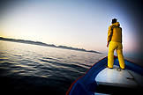 MEXICO, Baja, Magdalena Bay, Pacific Ocean, the boat heading out into the ocean at sunrise