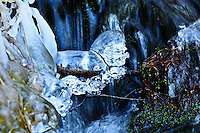 """LION IN WINTER""<br />