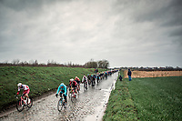 Peloton riding the 'Holleweg' cobbles. <br /> <br /> 71st Kuurne-Brussel-Kuurne (2019)<br /> Kuurne > Kuurne 201km (BEL)<br /> <br /> ©kramon