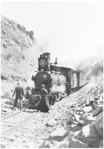 Engine #175 pulling passenger train.<br /> D&amp;RG    1/1887