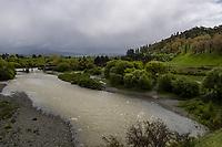 Wairarapa countryside near Masterton, New Zealand on Wednesday, 23 October 2019. Photo: Dave Lintott / lintottphoto.co.nz