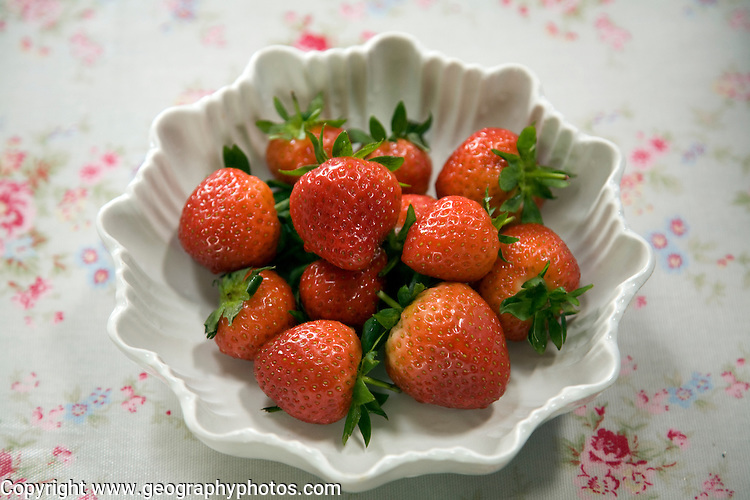 Looking down on white bowl fresh strawberries on floral tablecloth
