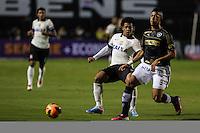 SAO PAULO, SP, 25 DE MAIO 2013 - CAMP BRASILEIRO - Corinthians durante partida contra Botafogo valido para pimeira rodada do Campeonato Brasileiro no Estadio do Pacaembu neste sabado, 25 FOTO VANESSA CARVALHO- BRAZIL PHOTO PRESS