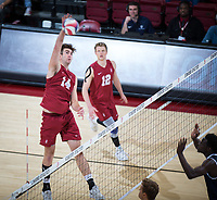 STANFORD, CA - March 14, 2019: Kyler Presho at Maples Pavilion. The #8 Stanford Cardinal fell to the #6 Pepperdine Waves 3-0.