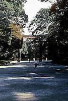 Tokyo: Meiji Shrine--pathway. Photo '81.