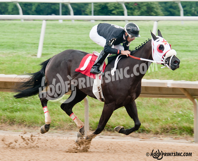 Avie winning at Delaware Park on 7/13/13