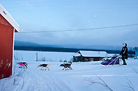 Sven Haltman brings his dogs in to park at the village checkpoint of Ruby during the 2010 Iditarod