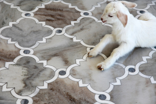 Atticus stone waterjet mosaic shown in Cashmere honed with polished Allure and Afyon White.