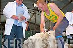 John Pat Cronin (Kilgarvan) at the Top of Coom Sheep Shearing on Sunday last.