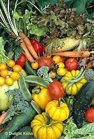 HS52-007b  Variety of harvested vegetables - squash, cucumber, tomato, corn, carrot, tomato, lettuce, broccoli, bean