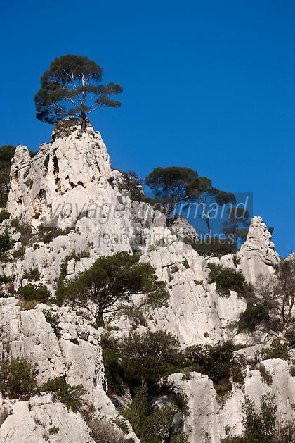 Europe/France/Provence-Alpes-Côte d'Azur/13/Bouches-du-Rhône/ Cassis:  Calanque d'En-Vau