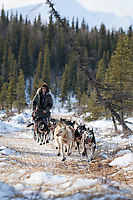Ray Redington Jr. on a near-snowless section of the trail 13 miles after leaving the Rohn checkpoint during Iditarod 2009