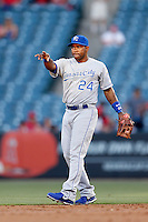 Miguel Tejada #24 of the Kansas City Royals during a game against the Los Angeles Angels at Angel Stadium on May 14, 2013 in Anaheim, California. (Larry Goren/Four Seam Images)