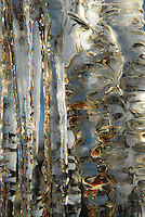 &quot;ICICLES-5&quot;<br />