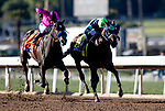 November 1, 2019: Storm the Court, ridden by Flavien Prat, wins the TVG Breeders' Cup Juvenile on Breeders' Cup World Championship Friday at Santa Anita Park on November 1, 2019: in Arcadia, California. Carolyn Simancik/Eclipse Sportswire/CSM